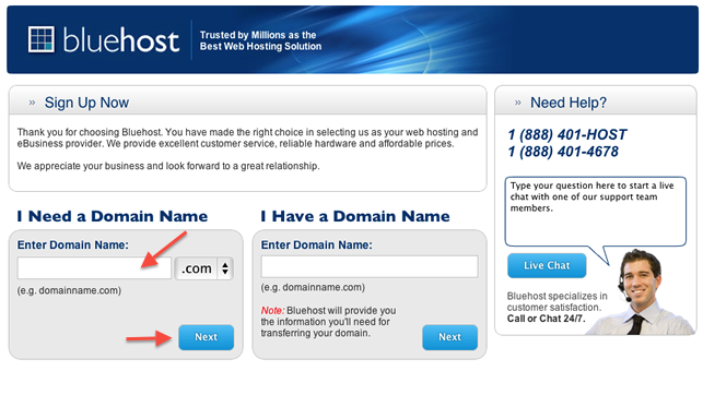 enter-your-domain-name-into-bluehost